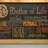 Rhythm Of Life Animal Chiropractic