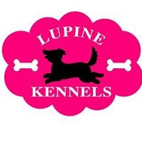 Lupine Kennels Boarding and Grooming