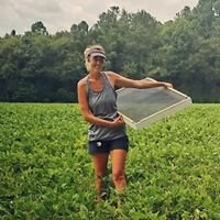 Sarah Arthur LLC - Crop Scouting & Soil Sampling