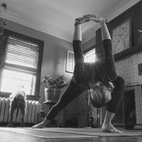 Yoga In Anoka