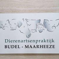 Dierenartsenpraktijk Budel - Maarheeze