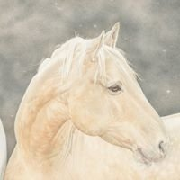 Horse Charming