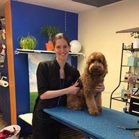 Royal Paws Dog Grooming, LLC