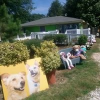 A Passion For Pets Playcare and Learning