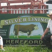 Silver Lining Hereford Beef