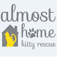Almost Home Kitty Rescue