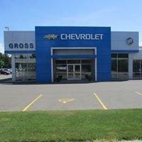 Gross Motors