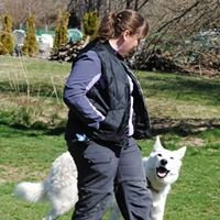 Moongazer Canine Companion Training