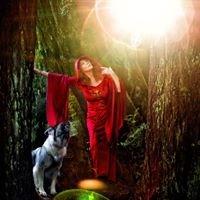 Gary Parker's CatDog Photography
