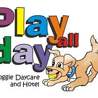 Play All Day Dog Daycare