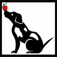 Teacher's Pet Training Academy, LLC