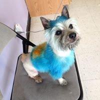 Fancy Dog Pet Salon Inc.