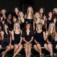 The University of Texas Cheer All-Girl