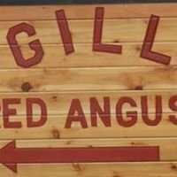 Gill Red Angus