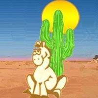 Desert Saddlery
