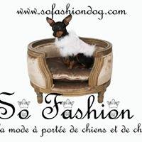 La mode a portee de chien et de chat