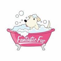 Fantastic Fur Dog Grooming