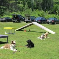 Dee Ganley Dog Training Services East Andover NH