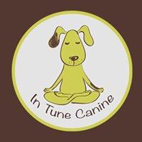 In Tune Canine