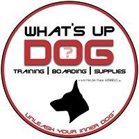 What's Up Dog? by Von Herder Haus Kennels