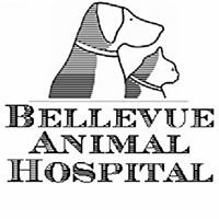 Bellevue Animal Hospital