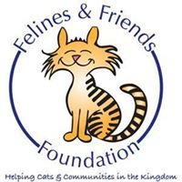 Felines & Friends Foundation - Vermont
