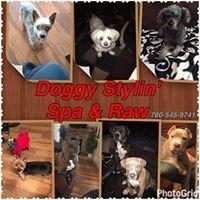 Doggy Stylin' Spa & Raw