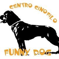 Educazione e Addestramento cani Perugia - Funny Dog