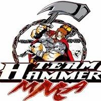 L.V.I.R.K. MMA - Team Hammer