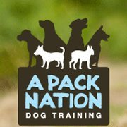 A Pack Nation Dog Training