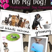 Oh My Dog - Professional Dog Groomers