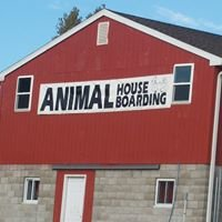 Animal House Boarding