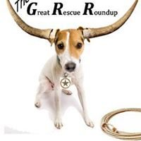Great Rescue Roundup