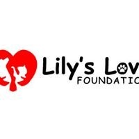 Lily's Love Foundation