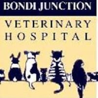 Bondi Junction Veterinary Hospital