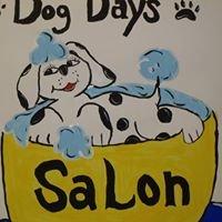 Dog Days Salon - Harlem, GA