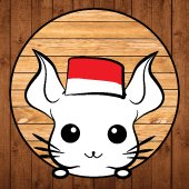 Chinchilla_id