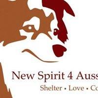 New Spirit for Aussie Rescue - Mid Atlantic