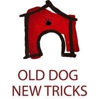 Old Dog New Tricks 250.675.4401