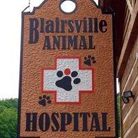 Blairsville Animal Hospital