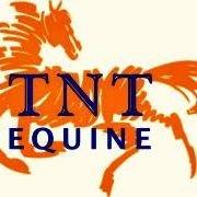TNT Equine