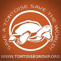 Tortoise Group