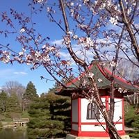 Normandale Japanese Garden