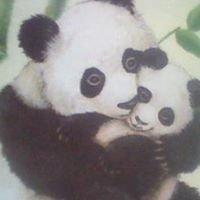 Panda King Chinese Restaurant