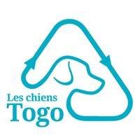 Les chiens Togo