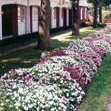 Schrader Funeral Home & Crematory