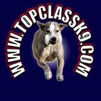 Top Class K-9 LLC