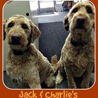 Jack & Charlie's Pet Supply
