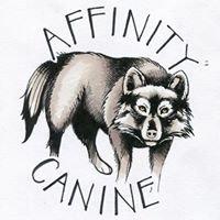 Affinity Canine Training