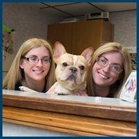 CoTwins Veterinary Care, LLC